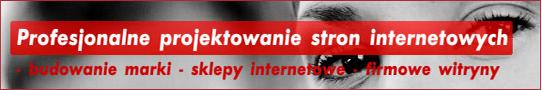 serwisy strony www - serwisy dedykowane aplikacje pod zamówieni a, systemy fiskalne